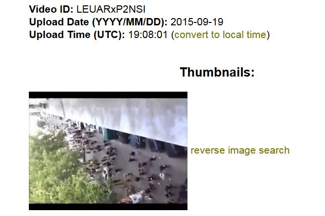resultaat YouTube DataViewer